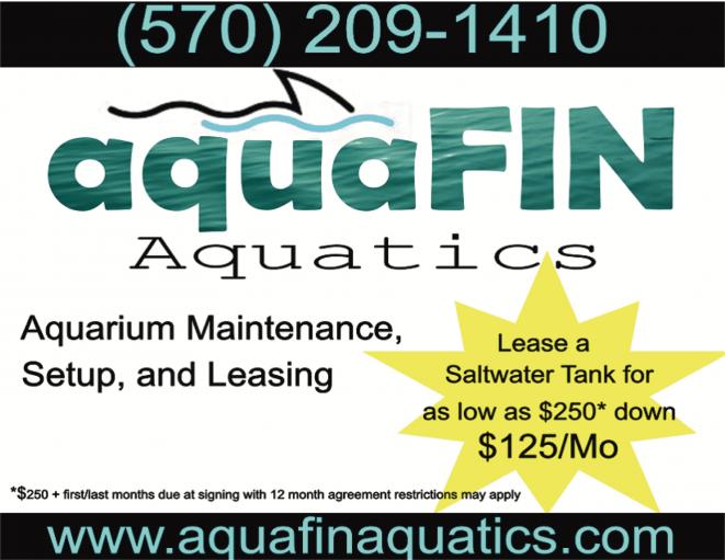 Aquafin Aquatics
